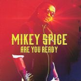 Mikey Spice - Are You Ready (VPal Music) CD